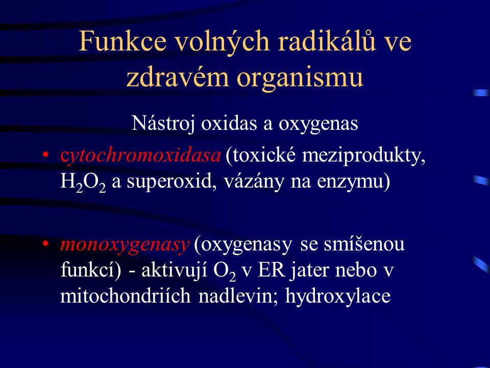 Funkce volných radikálů ve zdravém organismu