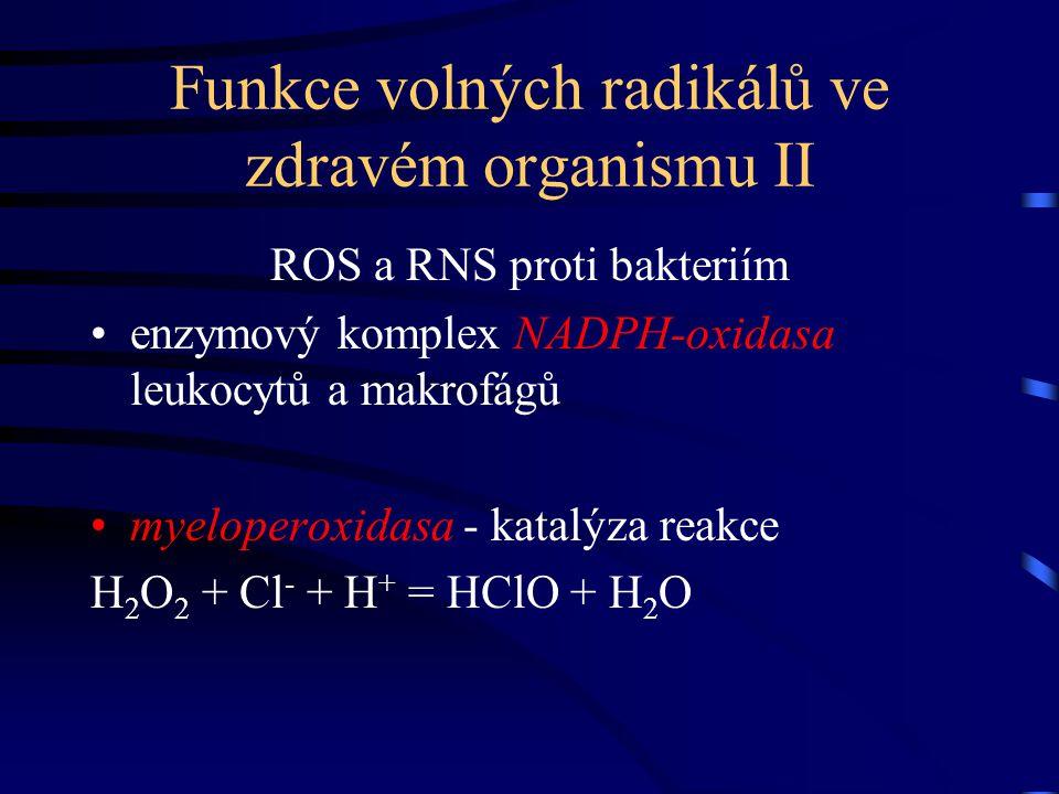 Funkce volných radikálů ve zdravém organismu II