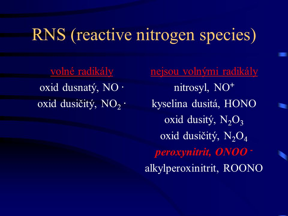 RNS (reactive nitrogen species)