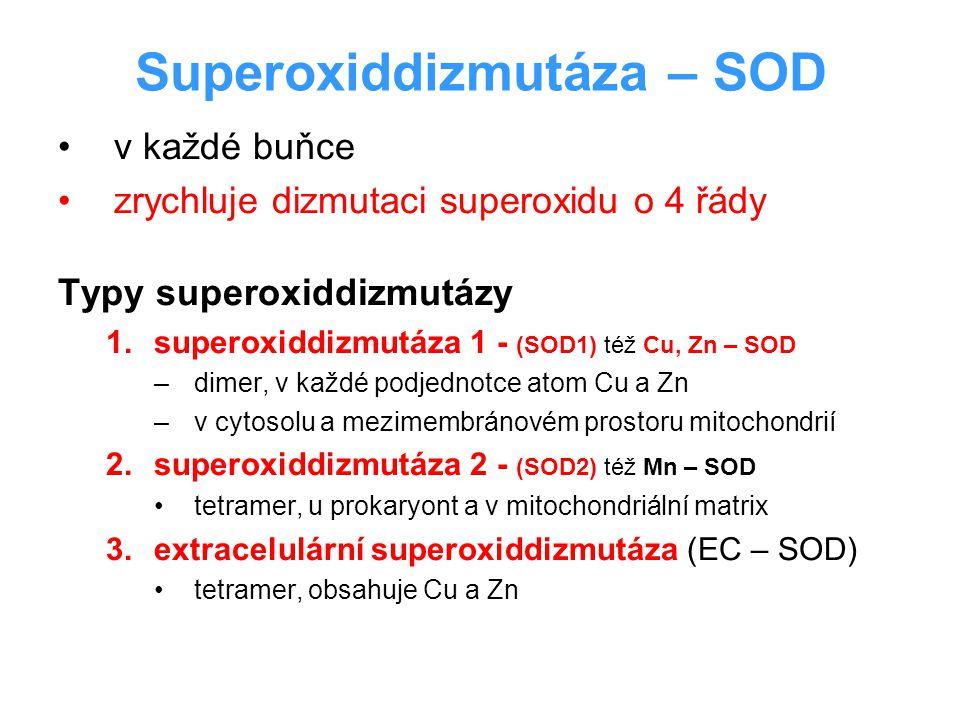 Superoxiddizmutáza – SOD