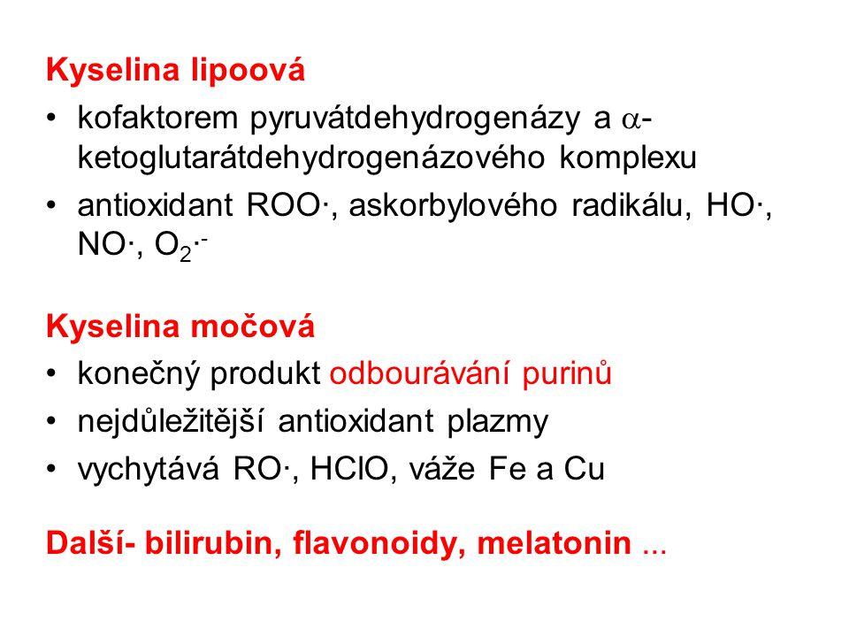 Kyselina lipoová kofaktorem pyruvátdehydrogenázy a a-ketoglutarátdehydrogenázového komplexu.