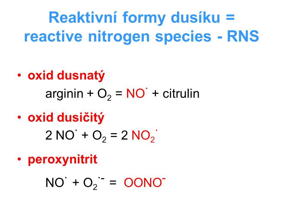 Reaktivní formy dusíku = reactive nitrogen species - RNS