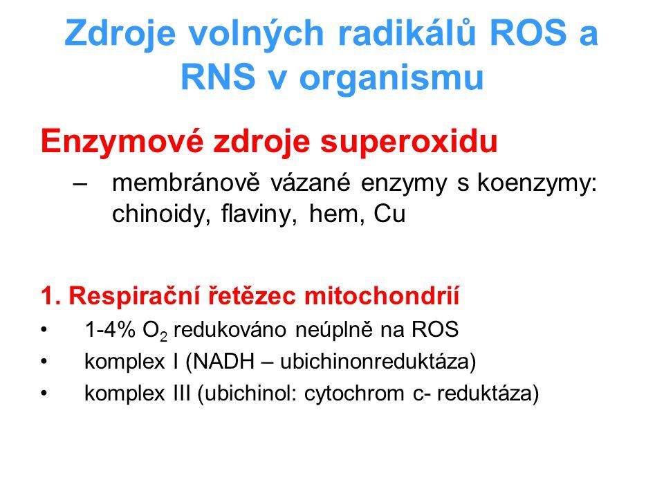 Zdroje volných radikálů ROS a RNS v organismu
