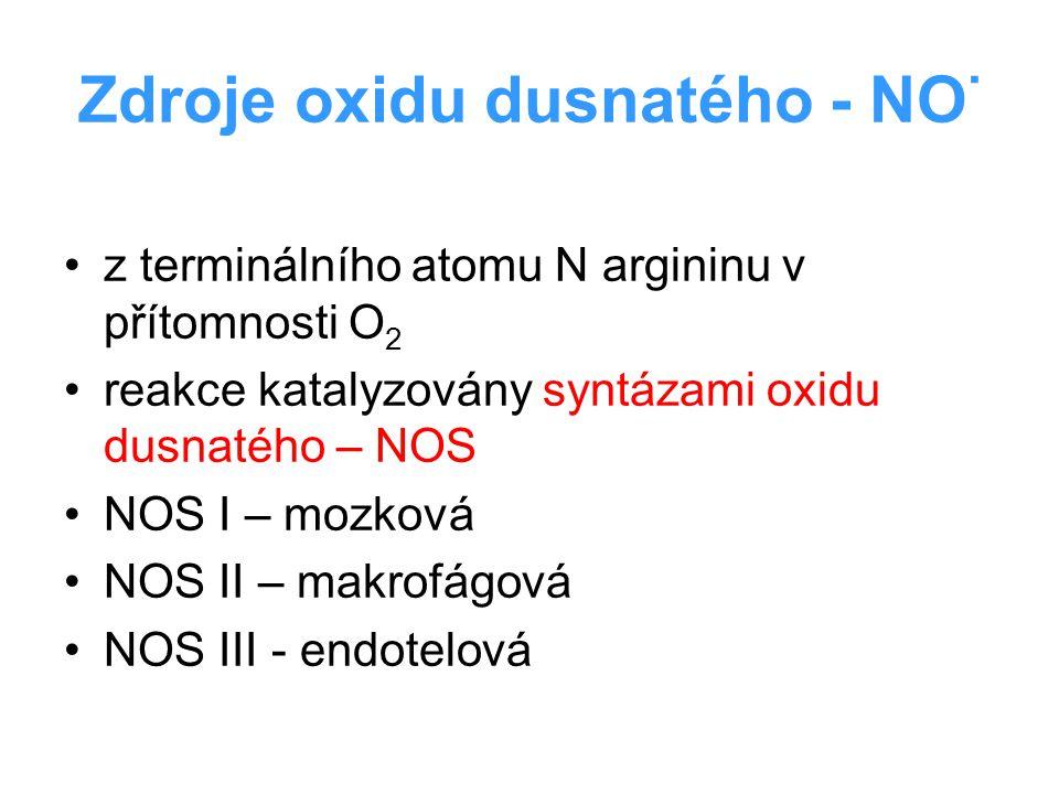 Zdroje oxidu dusnatého - NO·