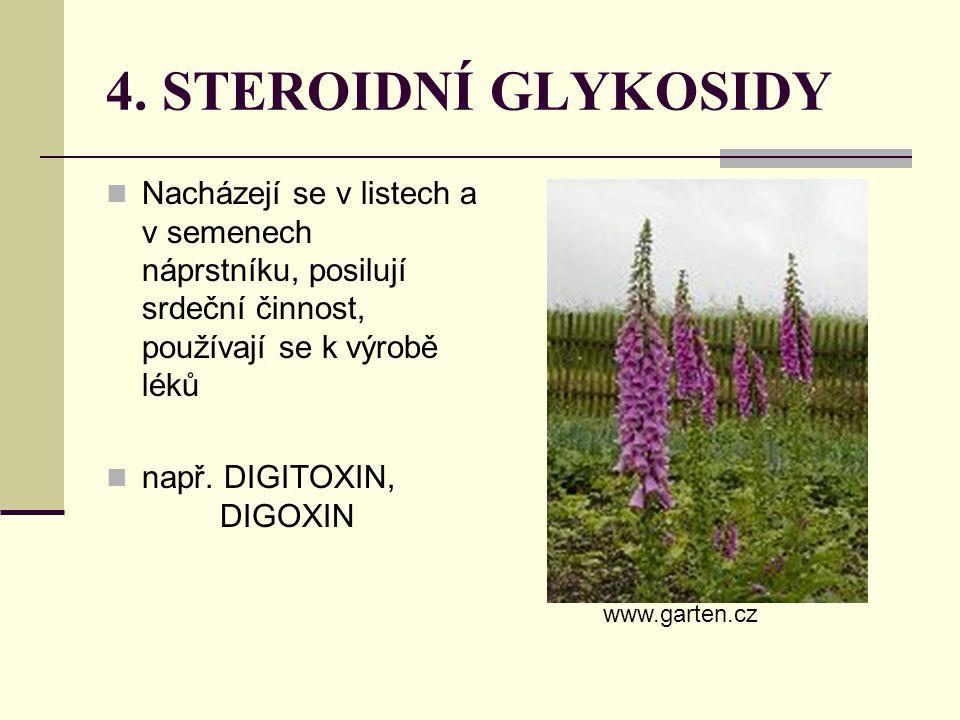 4. STEROIDNÍ GLYKOSIDY Nacházejí se v listech a v semenech náprstníku, posilují srdeční činnost, používají se k výrobě léků.
