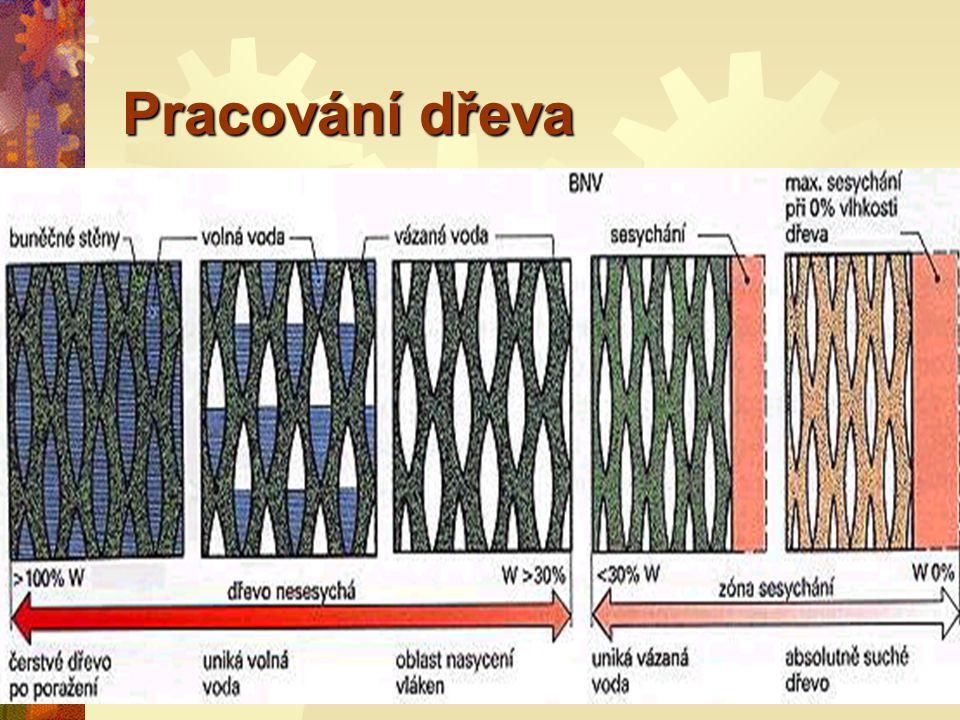 Pracování dřeva Voda (vlhkost) ve dřevě se nachází v buněčných dutinách.
