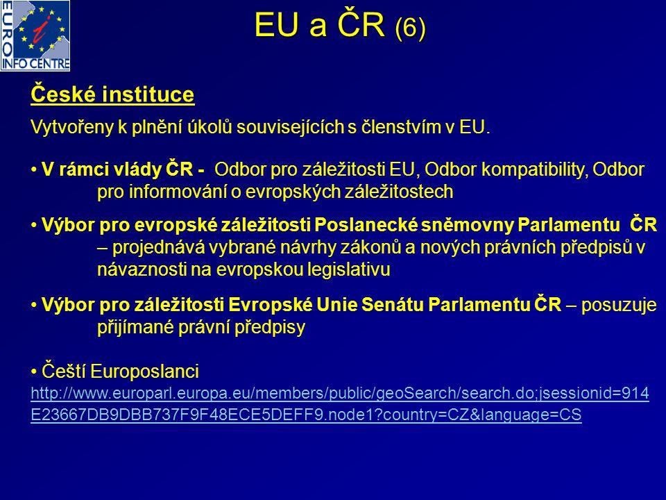 EU a ČR (6) České instituce