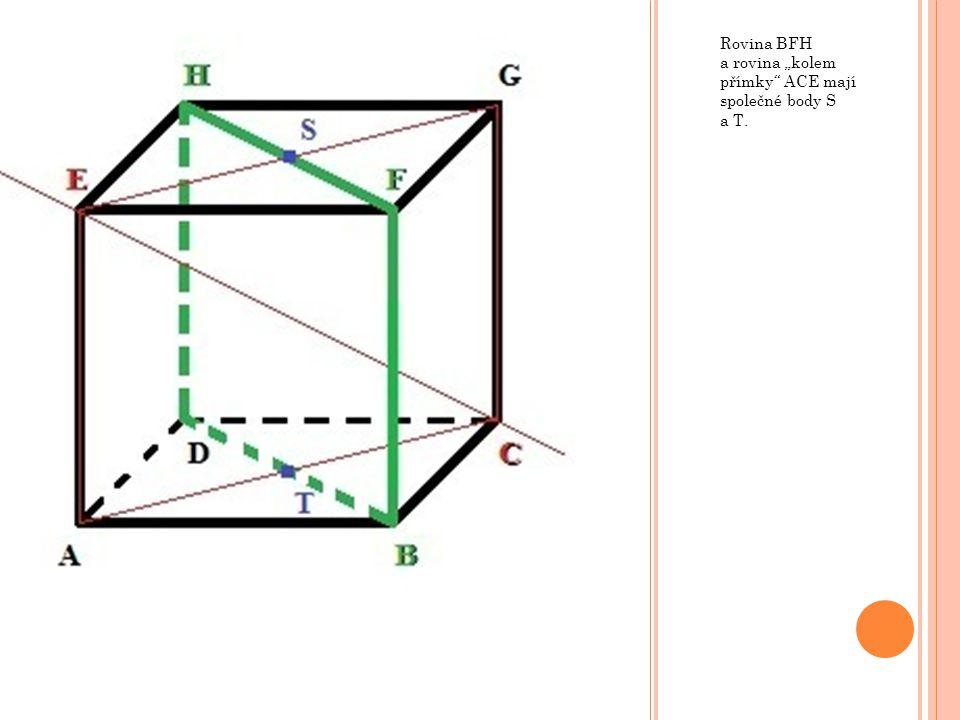 """Rovina BFH a rovina """"kolem přímky ACE mají společné body S a T."""
