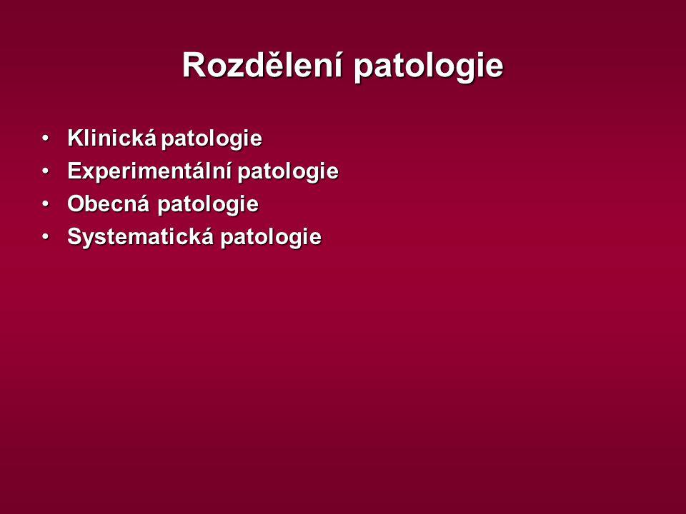 Rozdělení patologie Klinická patologie Experimentální patologie