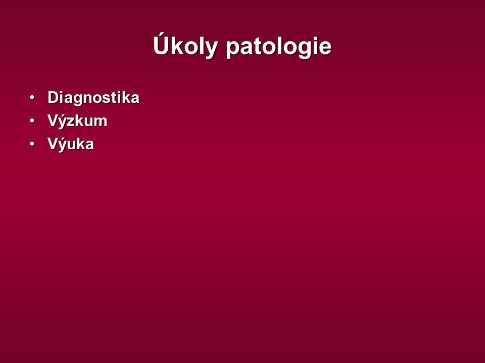 Úkoly patologie Diagnostika Výzkum Výuka