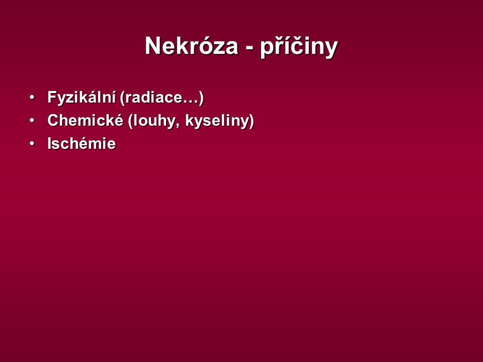 Nekróza - příčiny Fyzikální (radiace…) Chemické (louhy, kyseliny)