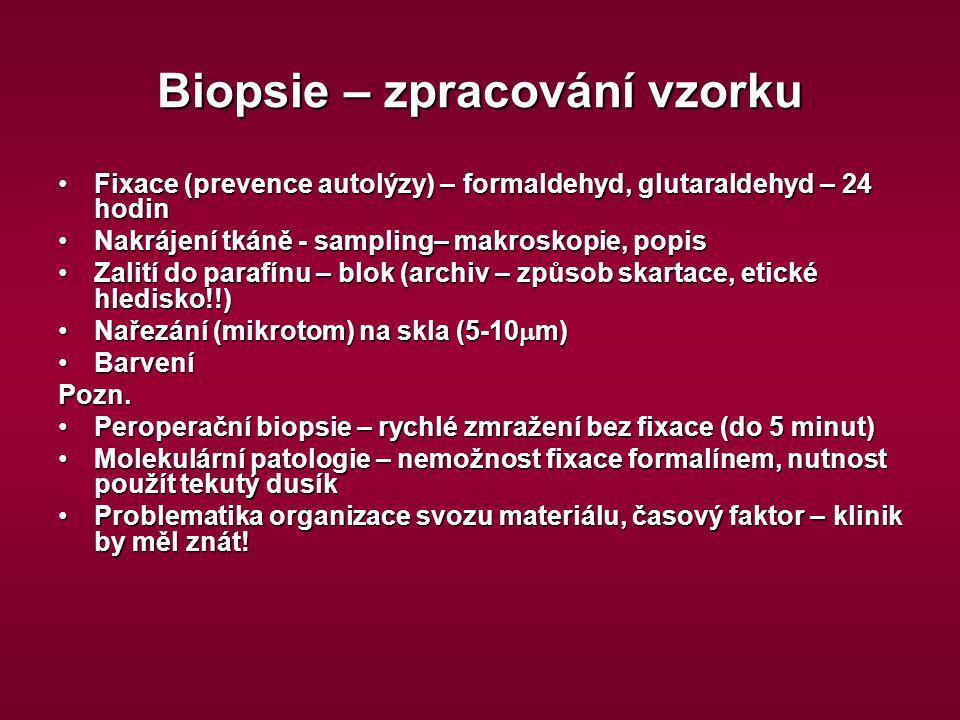Biopsie – zpracování vzorku