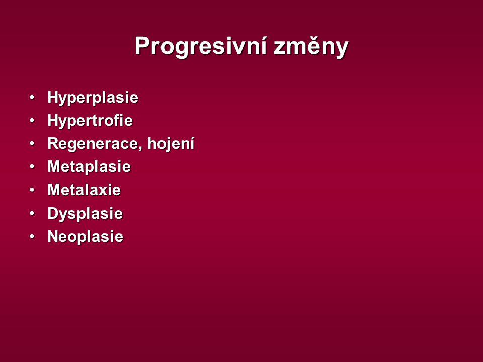 Progresivní změny Hyperplasie Hypertrofie Regenerace, hojení