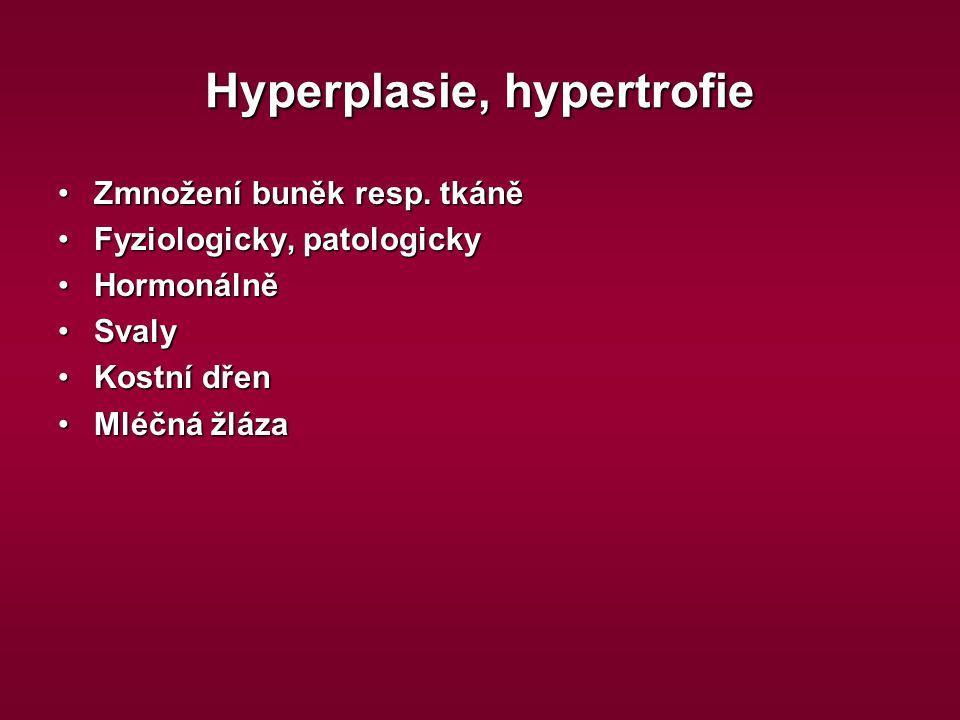 Hyperplasie, hypertrofie