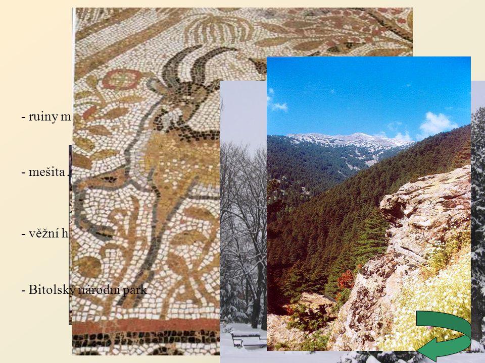 Битола (Bitola) - ruiny města Heraclea Lyncestis - mešita Ajdar-kadi