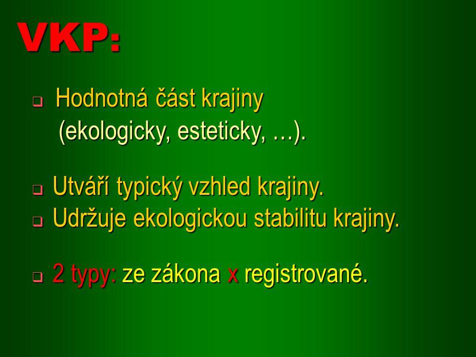 VKP: Hodnotná část krajiny (ekologicky, esteticky, …).