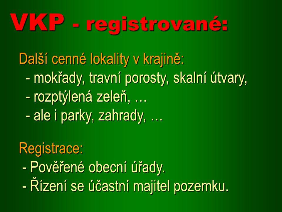 VKP - registrované: Další cenné lokality v krajině: