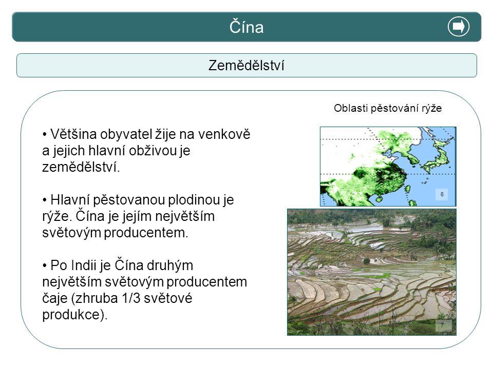 X. Zajímavosti Čína Zemědělství