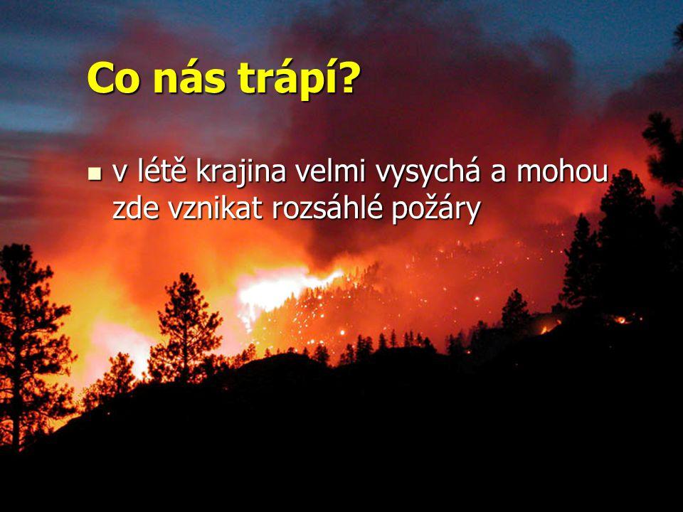 Co nás trápí v létě krajina velmi vysychá a mohou zde vznikat rozsáhlé požáry