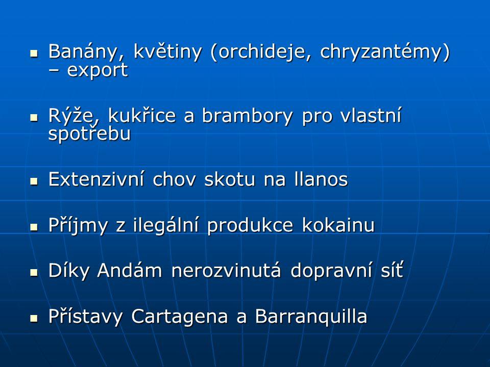 Banány, květiny (orchideje, chryzantémy) – export