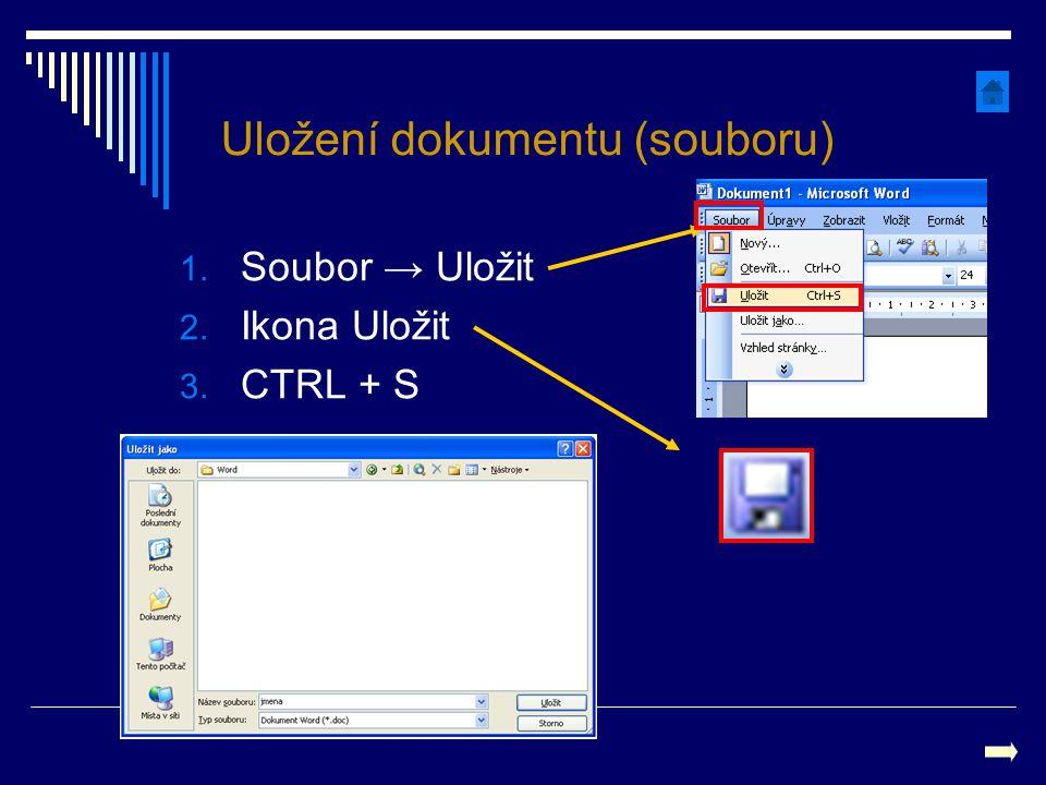 Uložení dokumentu (souboru)