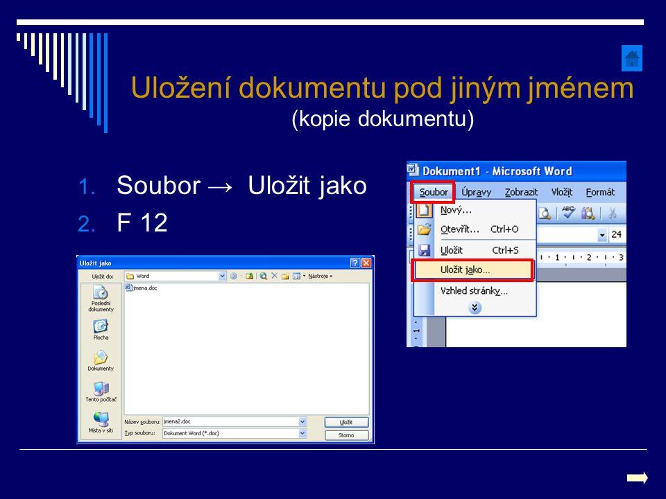 Uložení dokumentu pod jiným jménem (kopie dokumentu)
