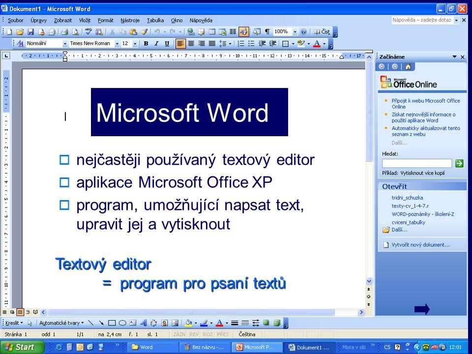 Microsoft Word nejčastěji používaný textový editor