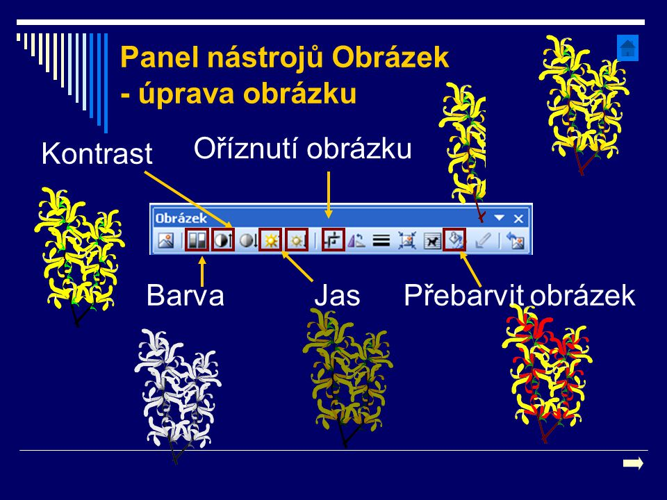 Panel nástrojů Obrázek - úprava obrázku