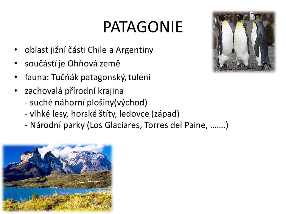PATAGONIE oblast jižní části Chile a Argentiny součástí je Ohňová země