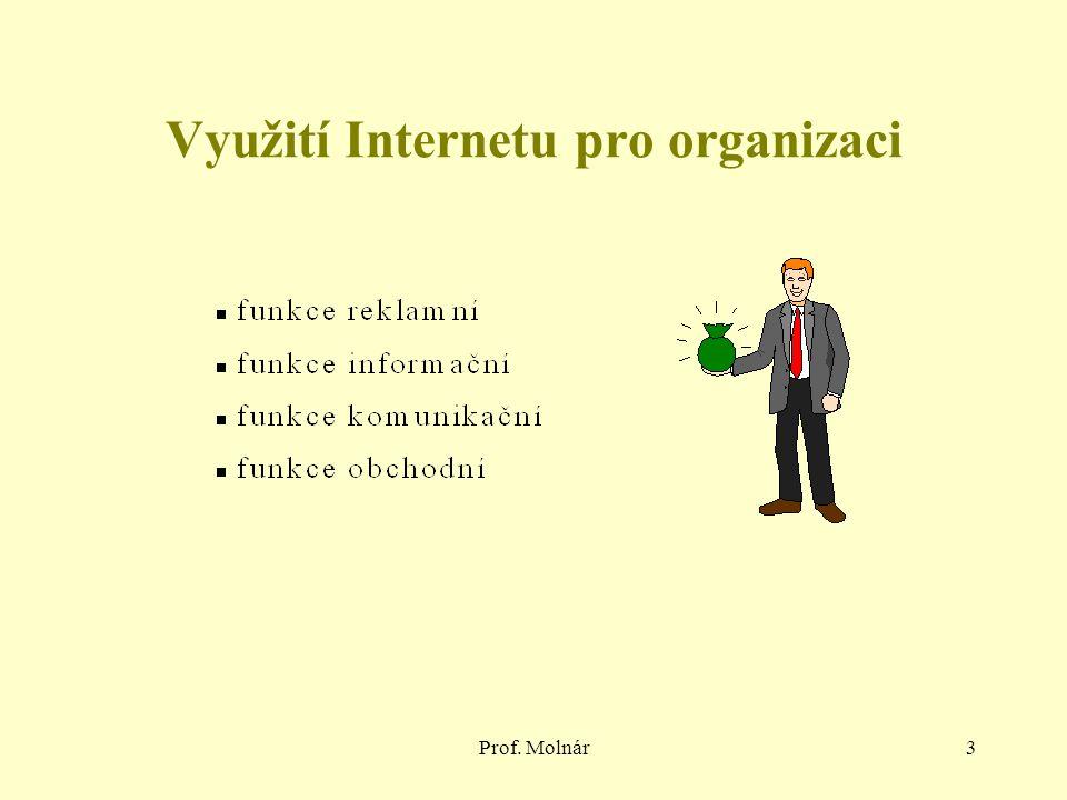 Využití Internetu pro organizaci
