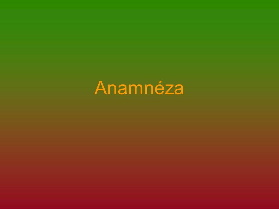 Anamnéza