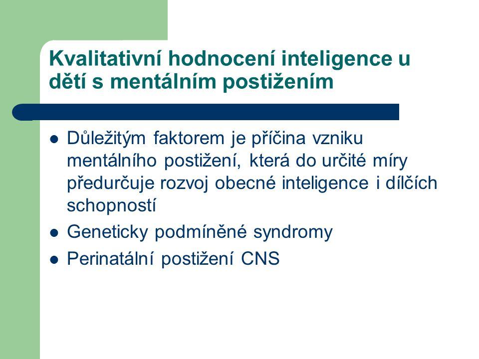 Kvalitativní hodnocení inteligence u dětí s mentálním postižením