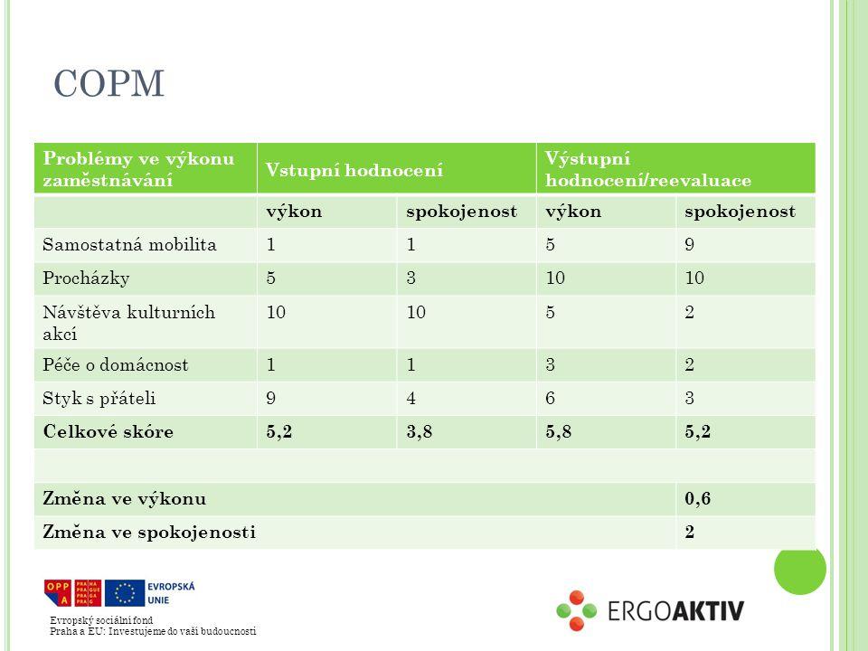 COPM Problémy ve výkonu zaměstnávání Vstupní hodnocení