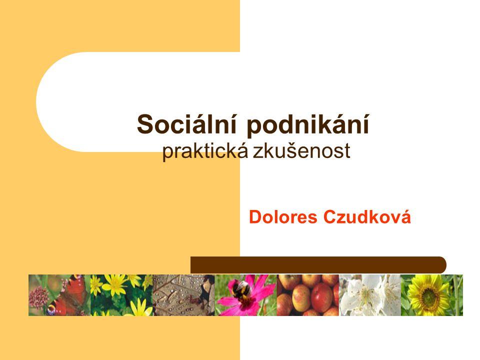 Sociální podnikání praktická zkušenost