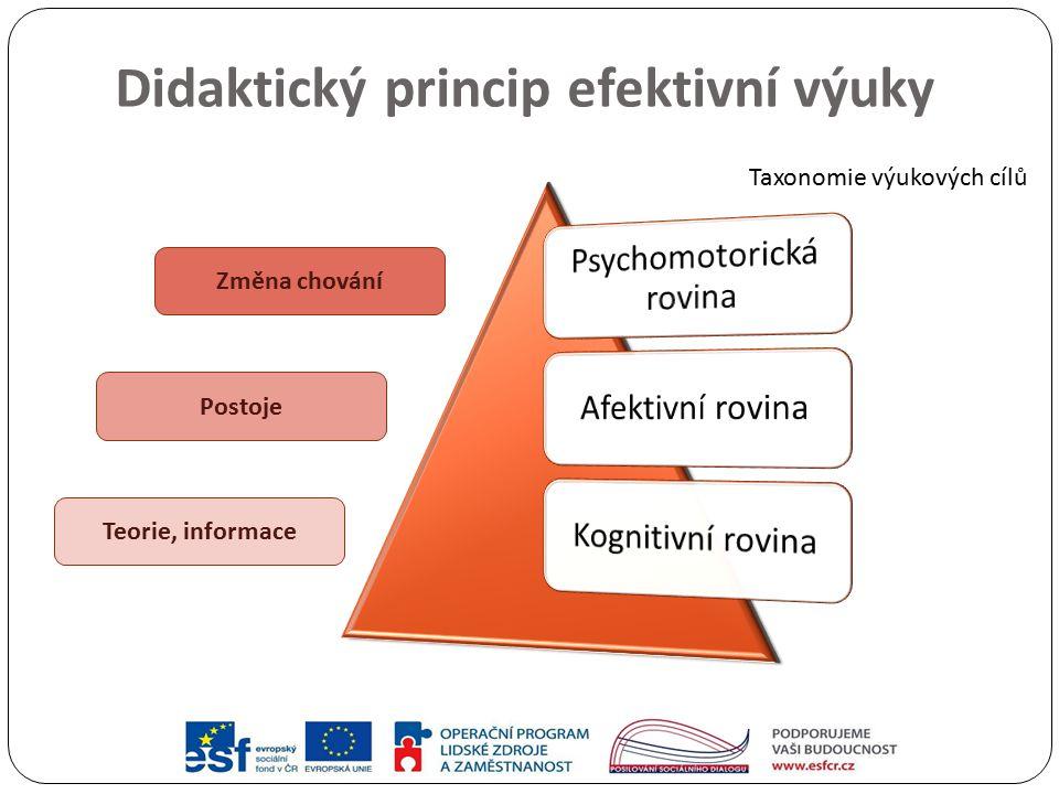 Didaktický princip efektivní výuky