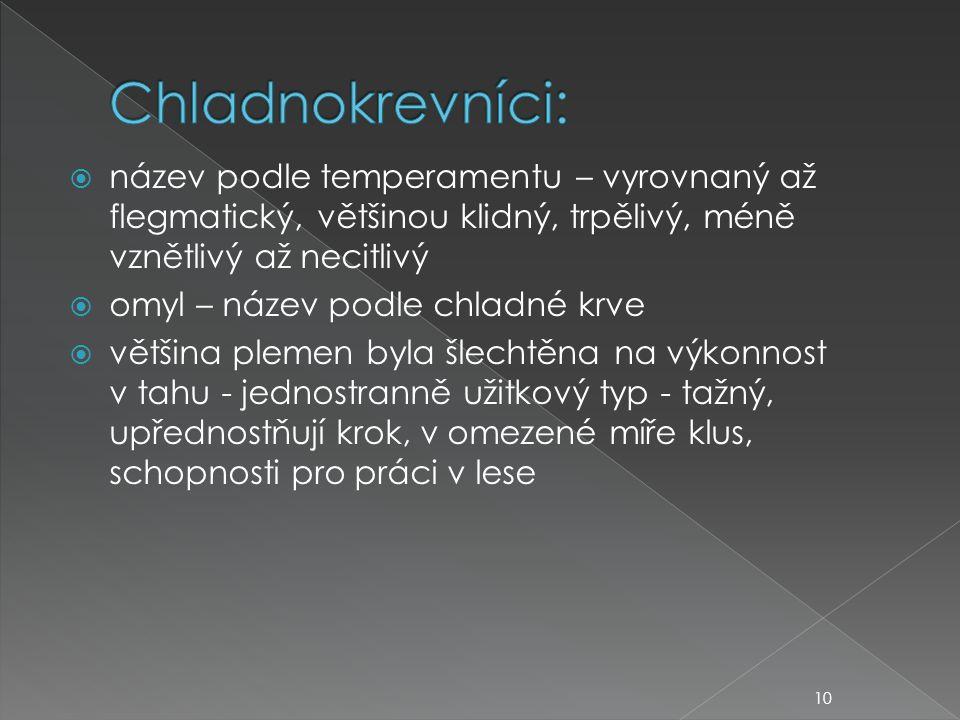Chladnokrevníci: název podle temperamentu – vyrovnaný až flegmatický, většinou klidný, trpělivý, méně vznětlivý až necitlivý.