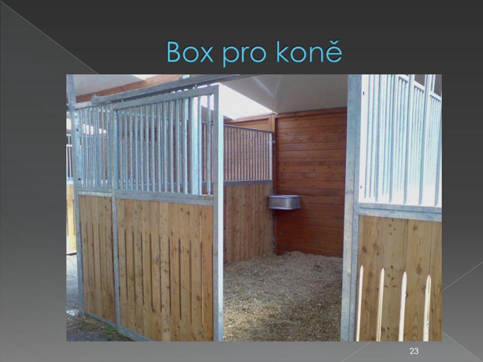 Box pro koně