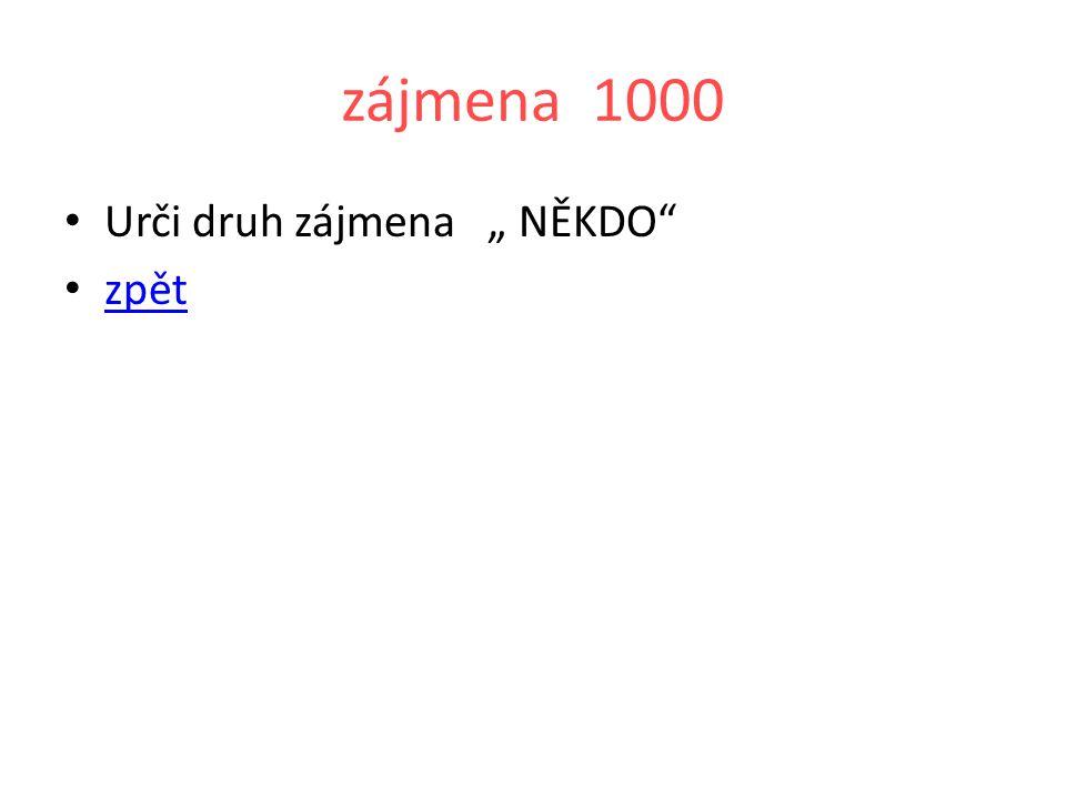 """zájmena 1000 Urči druh zájmena """" NĚKDO zpět"""