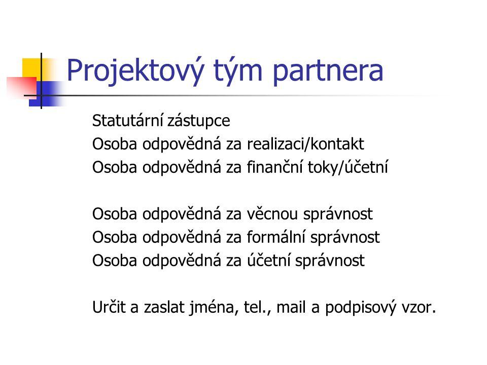 Projektový tým partnera