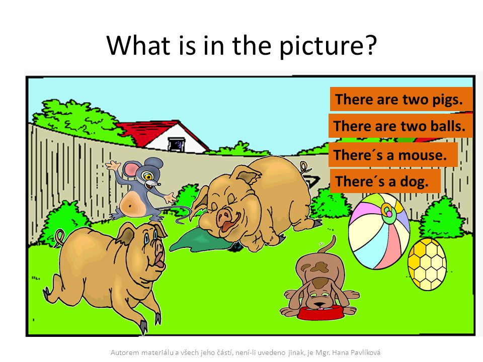 What is in the picture There are two pigs. There are two balls.