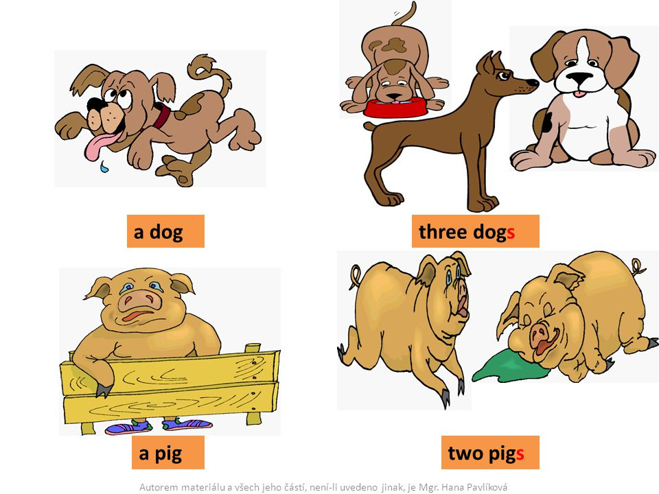 a dog three dogs a pig two pigs