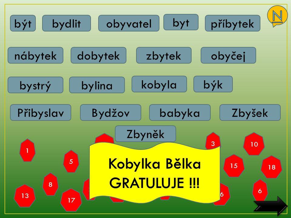 Kobylka Bělka GRATULUJE !!!