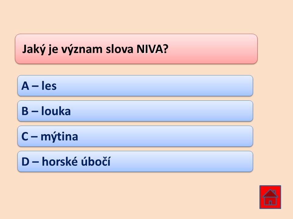 Jaký je význam slova NIVA
