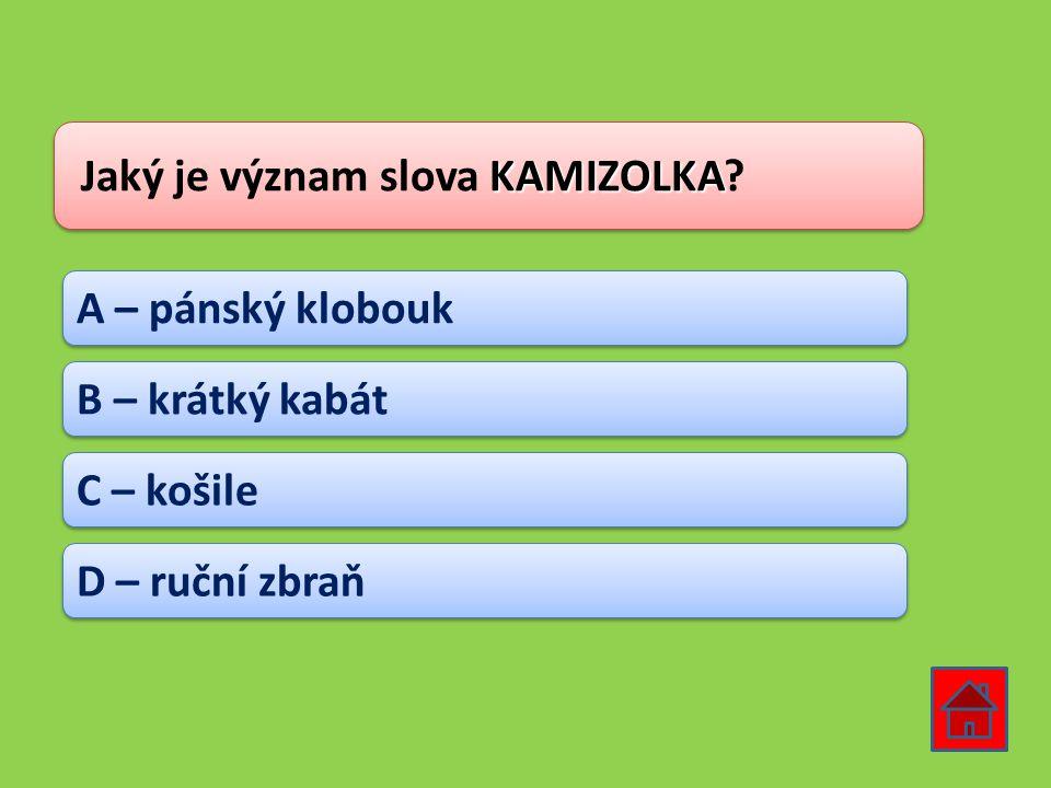 Jaký je význam slova KAMIZOLKA