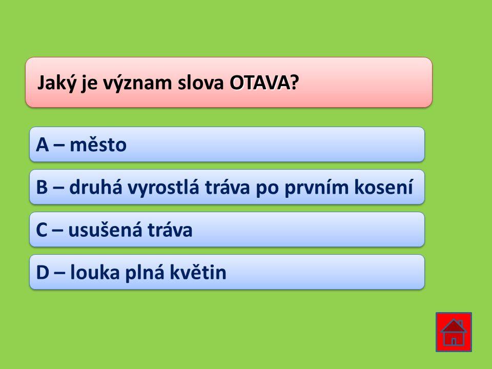 Jaký je význam slova OTAVA