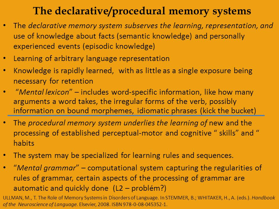 The declarative/procedural memory systems