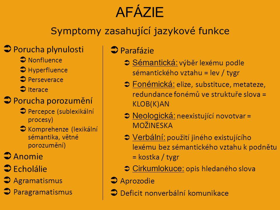Symptomy zasahující jazykové funkce