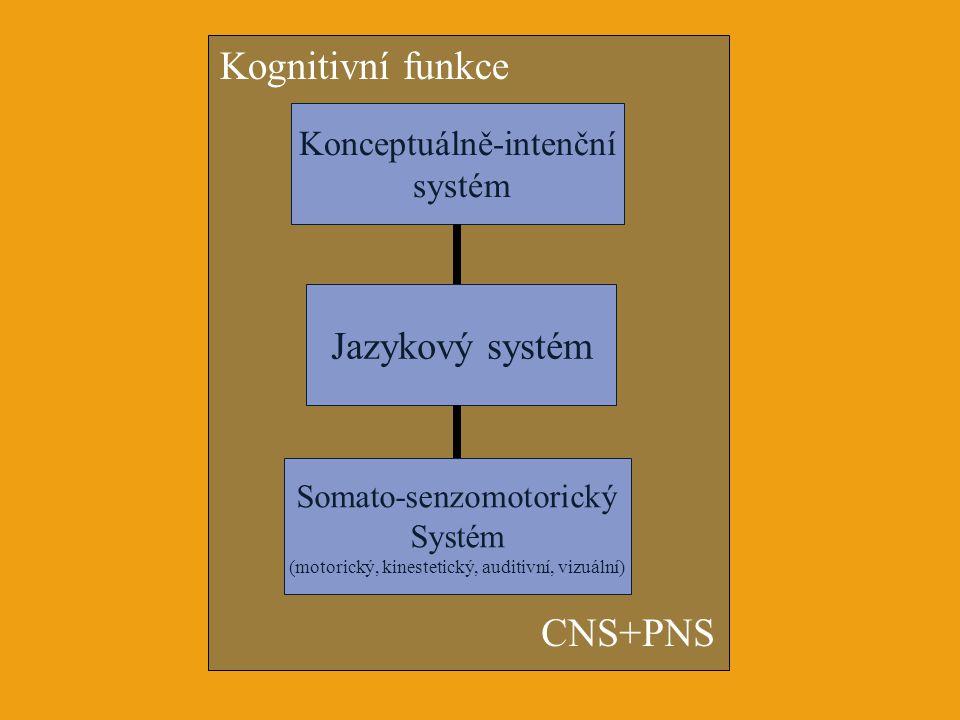 Kognitivní funkce CNS+PNS Jazykový systém Konceptuálně-intenční systém