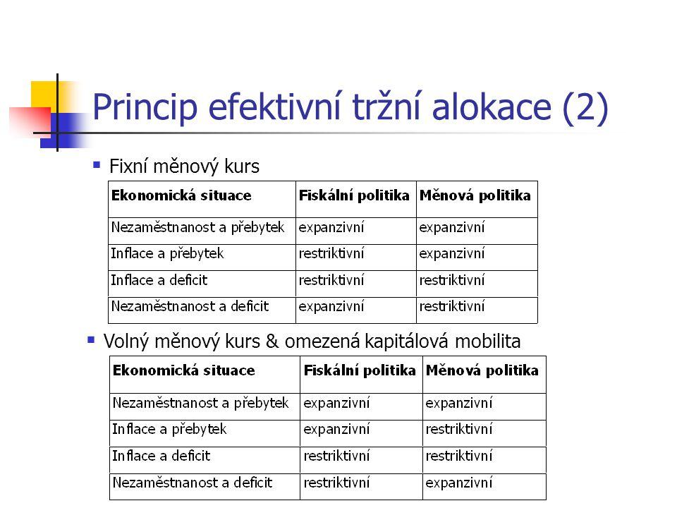 Princip efektivní tržní alokace (2)