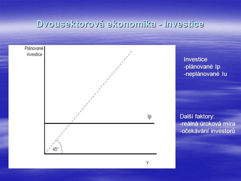 Dvousektorová ekonomika - Investice